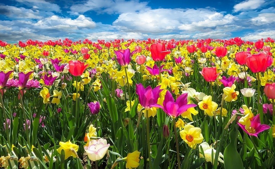 Tavaszi szünet - Programturizmus