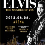 Elvis Budapest 2018. The Wonder of You Koncertshow