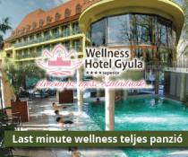 Last minute wellness
